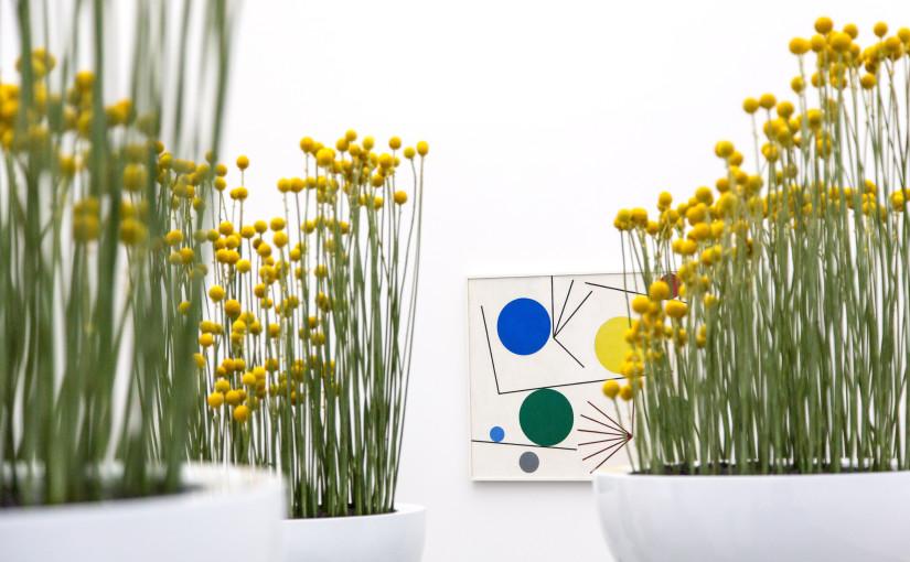 Ausstellung Aargauer Kunsthaus «Blumen für die Kunst»